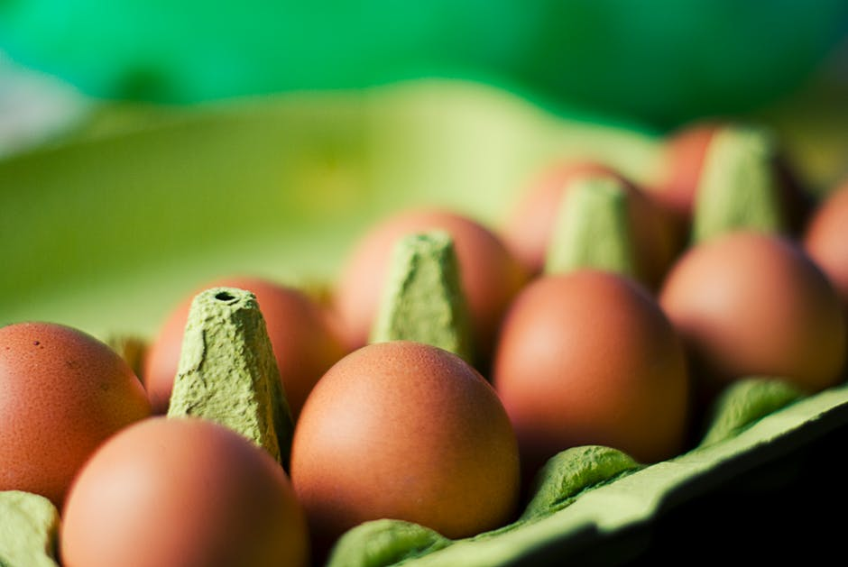 eieren nummers zoeken