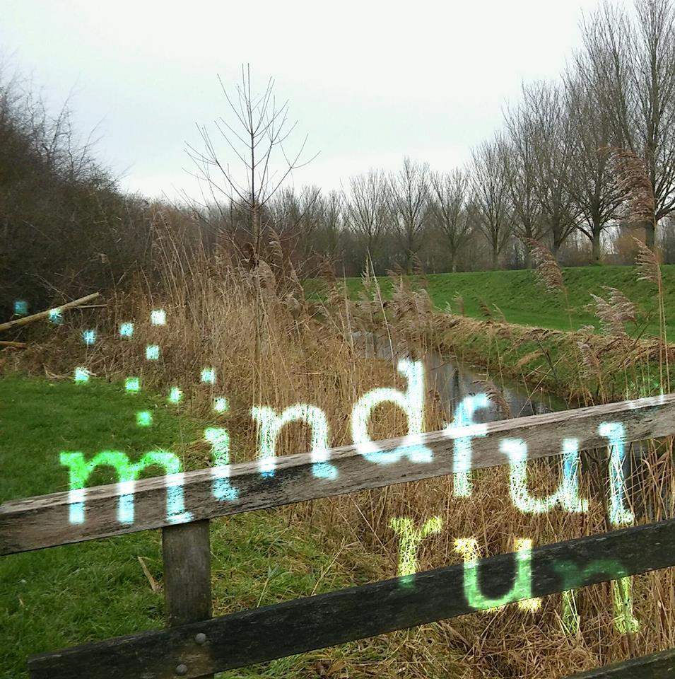 Mindful Run Cursussen in Westervoort