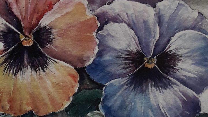 Combinatiecursus pastel/aquarel tekenen en schilderen bij kreatieve kring Westervoort