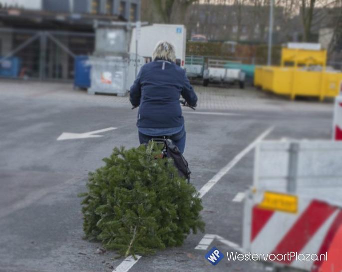 Uw oude kerstboom is € 0,50 waard.