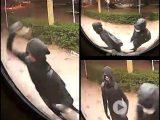 Eigenaar telefoonwinkel zet beelden online van inbrekers