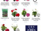 Plantenactie fanfare OBK