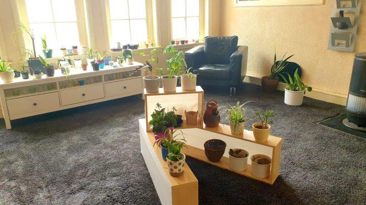 Nieuwe locatie voor het plantenasiel van Inloophuis De Herberg