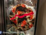 Expositie van glaskunstenaar Jan Berends in Huize Vredenburg